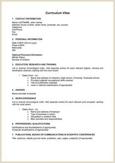 Cv format for Job south Africa 970 Best 1 Cv Template Images In 2019