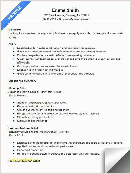 Plain Text Resume Example Free Cv Examples New Hybrid Resume