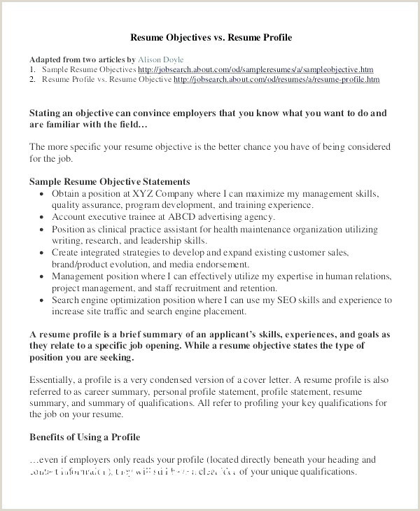 Cv format Example Professional Resume Template – Sample