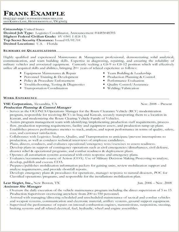 Cv Format For Logistics Job American Cv Template