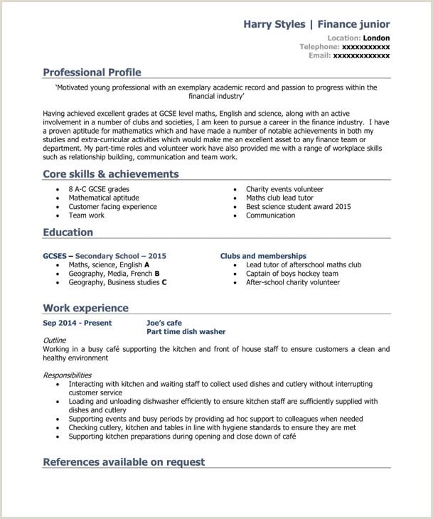 Cv format for Online Jobs 7 Best Cv Templates