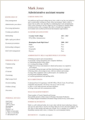 Cv format for Private Job Student Cv Template Samples Student Jobs Graduate Cv