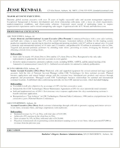 sales executive job description template