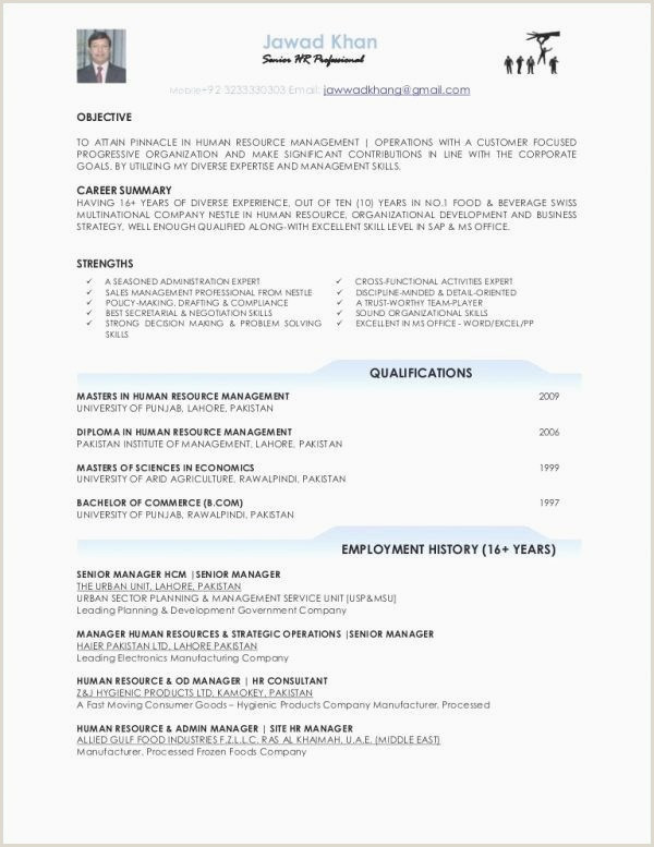Luxury Education for A Resume