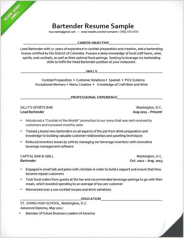 Cv Barman De Base 30 Professional How to Cv Xenakisworld