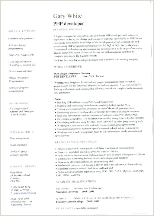 It Cv Template Assistant Sample Myperfect Free line