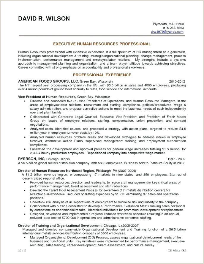 Cv format for Textile Job 25 Professional Merchandiser Job Description Resume
