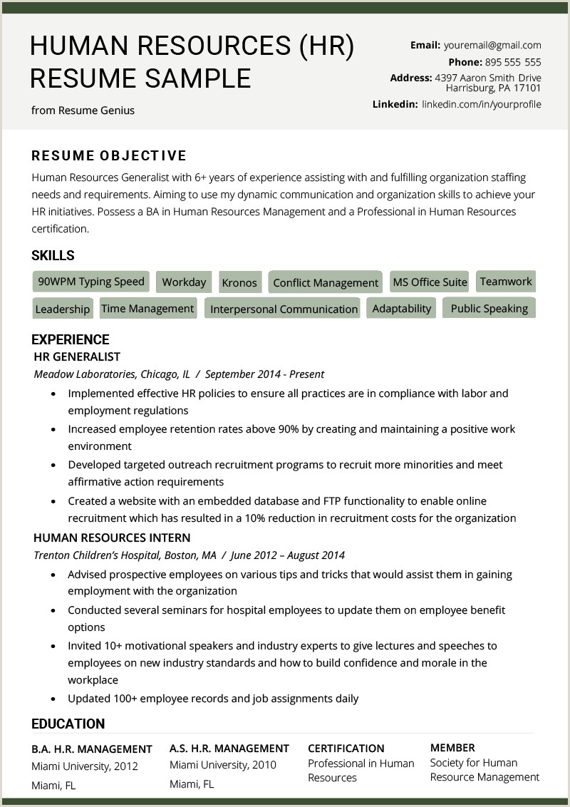 Cv format Hr Executive Fresher Human Resources Hr Resume Sample & Writing Tips