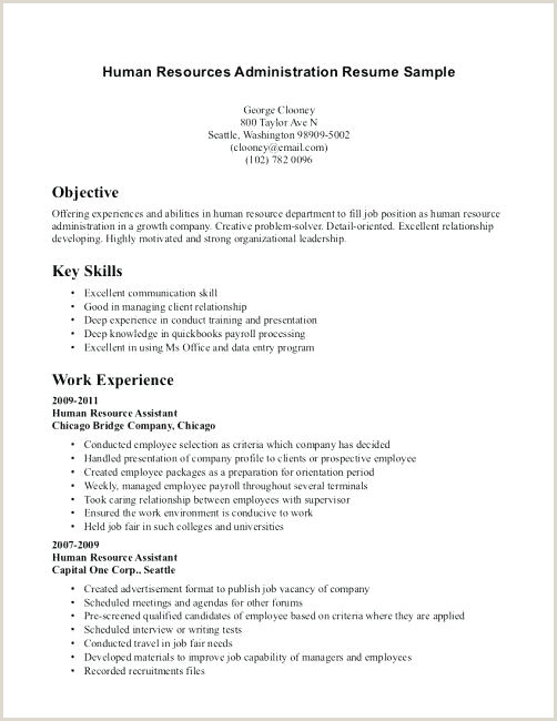 Cv Format Hr Executive Fresher Human Resources Resume Template
