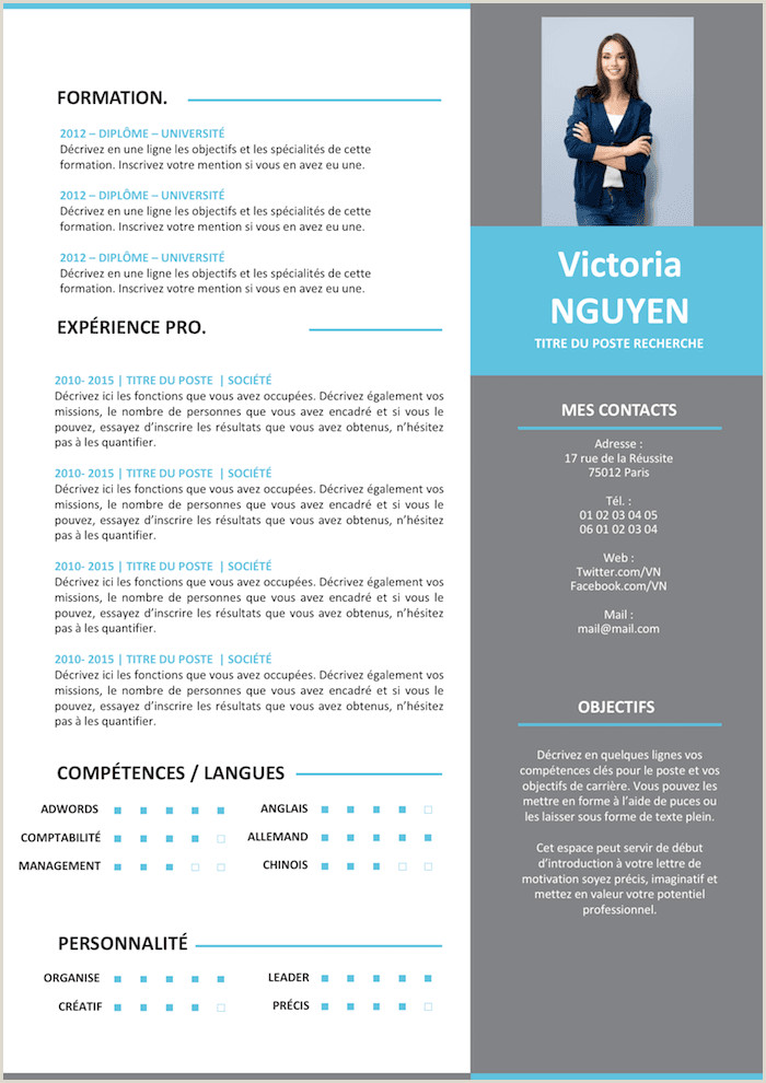 CV Moderne Grey Templates