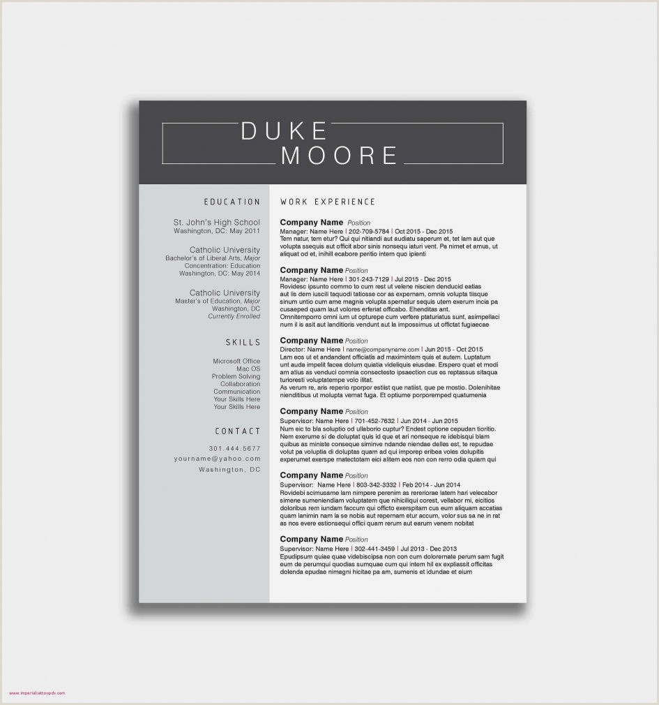 Cv format Modern Gratis Template Word Templates for Cv Free Resume format
