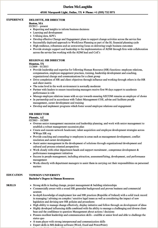 HR Director Resume Samples