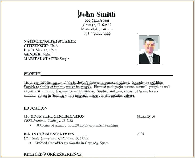 Cv format Of International Standard Template Standard Resume Latest Free Resumes Samples Unique