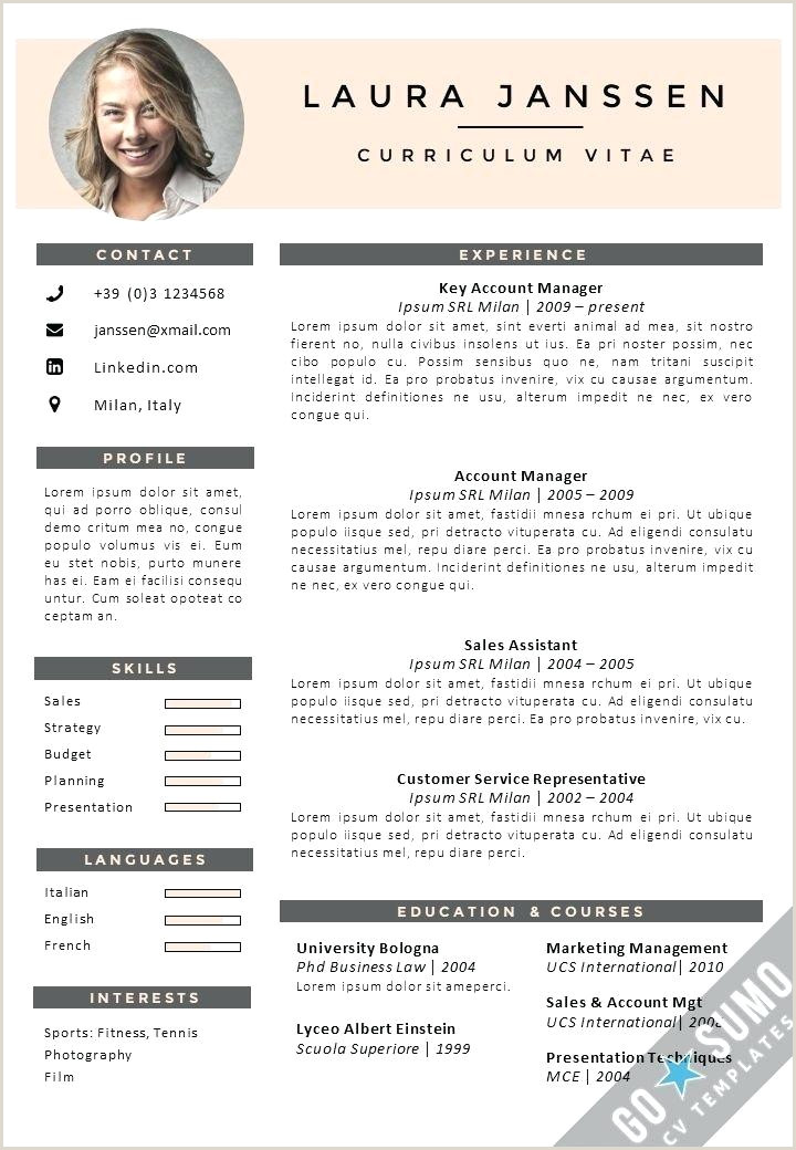 Cv format Sample Download Pdf Cv Template Pdf