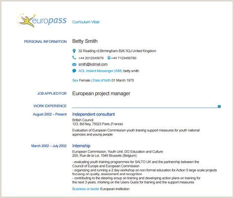 Cv In format Europass Completat Europass Cv Pl