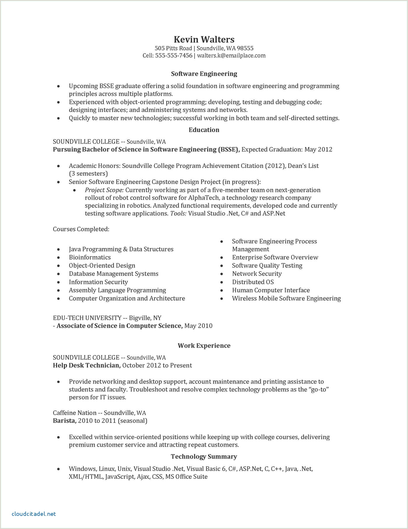 Innovative Resume Templates Professional Buy Resume