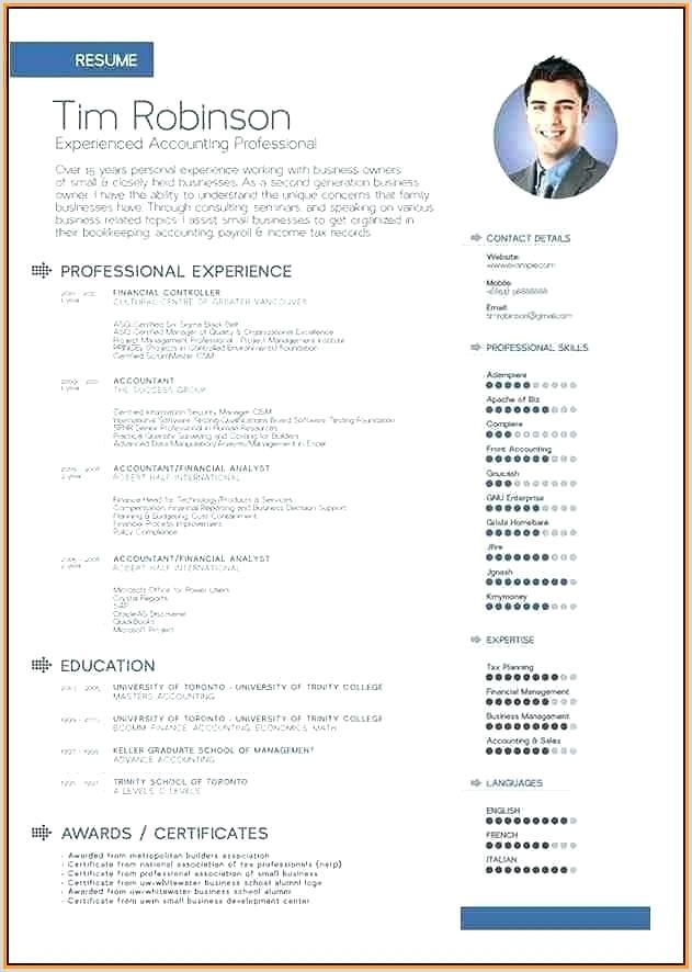 Template Cv English Example Pdf Uk Download
