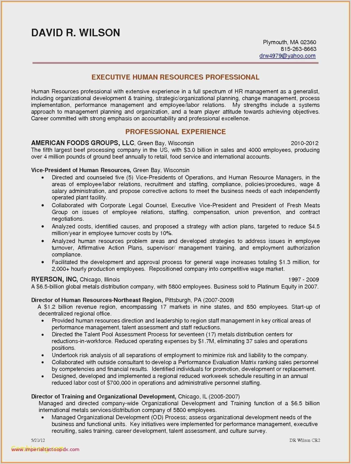 Cv Professional Experience Examples Cv original Design Libre 14 Graphic Design Resume Personal