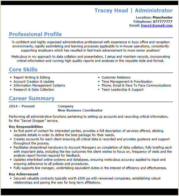 Cv Professional Profile Examples Uk 7 Best Cv Templates