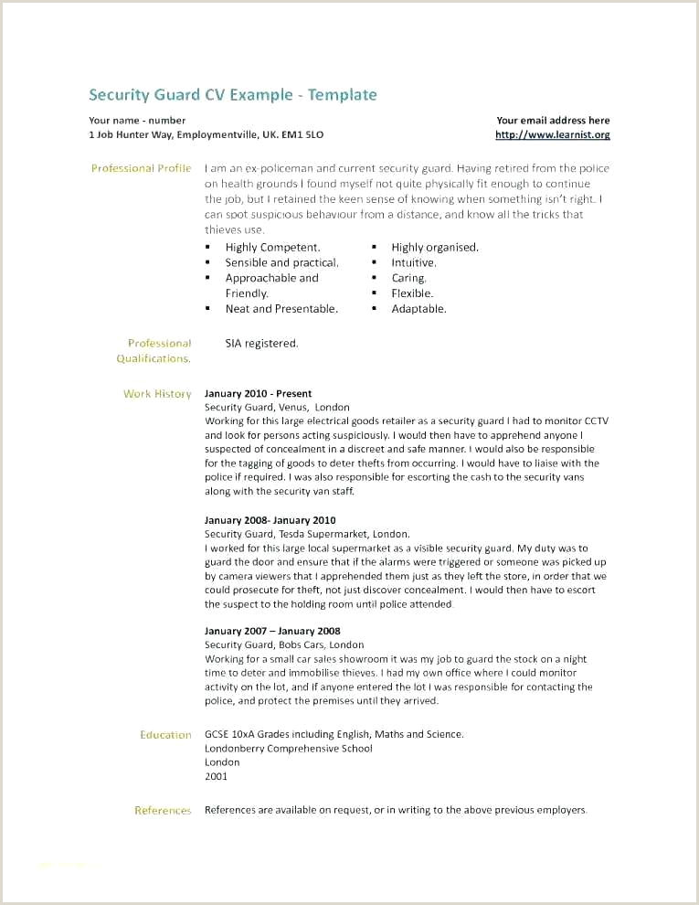 Resume Samples For Security Guard Information Analyst