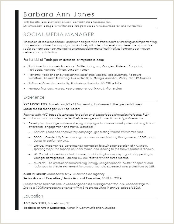 Cv Professional Skills Example Free Professional Resume Template 2014 – Kizi Games