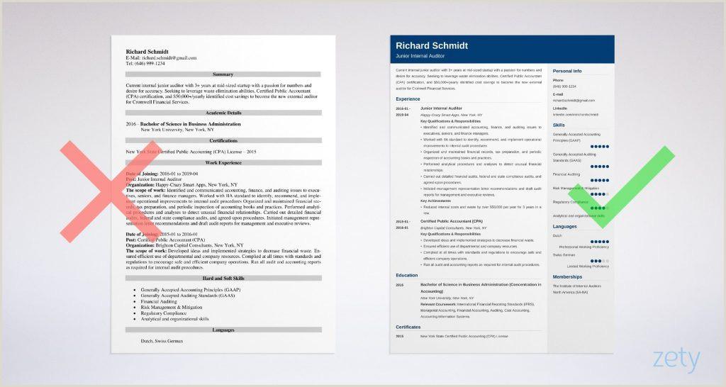 Externalor Resume Sample Senior Example Best External