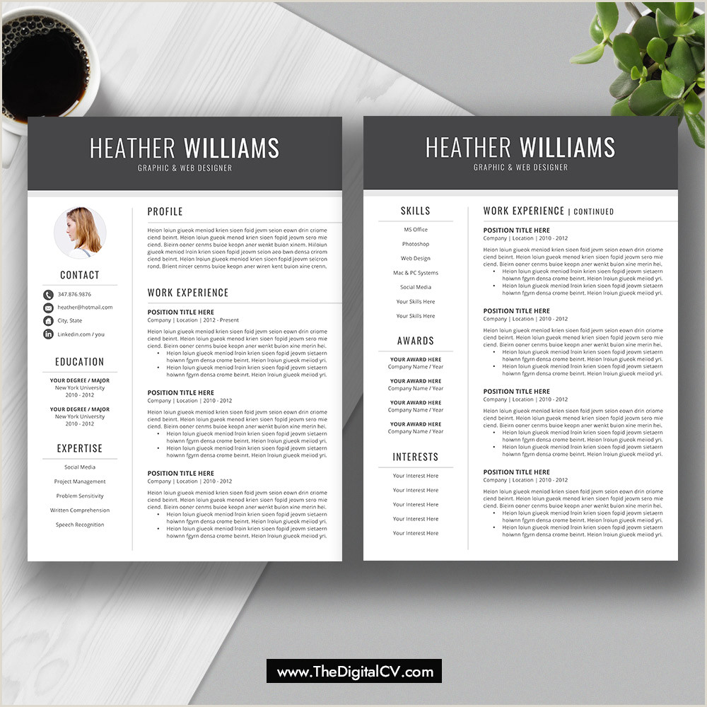 Resume Template for Job Application 2019 2020 CV Template