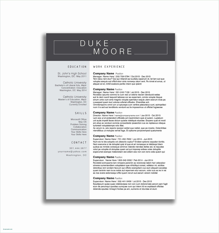 Federal Job Resume Sample Examples Federal Resume Samples