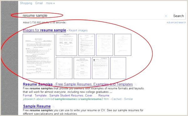 Cv Sample for Job Word Cv Gratuit Mercial Collections De Business Resume