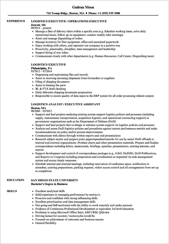 Cv Sample For Nursing Job Director Level Cv Examples