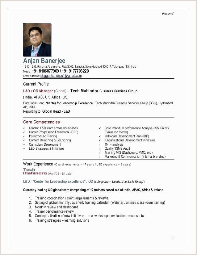 Cv Sample for Online Job Modele Cv Petence Internal Marketing Strategy Template