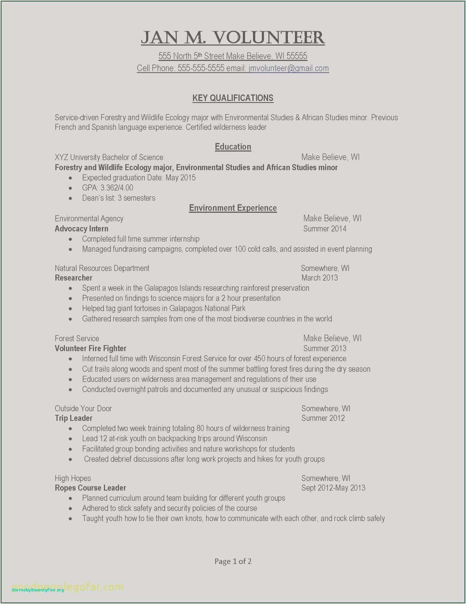 Cv Sample for Research Job Example Personal Essays Example Job Resume Awesome Examples
