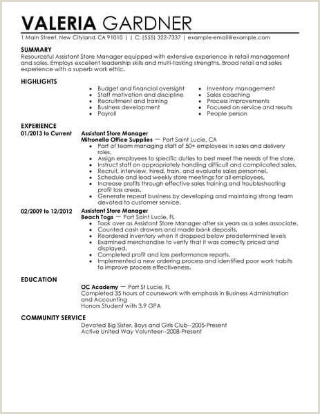 Example Resume For Retail Job Retail Sales Resume Example