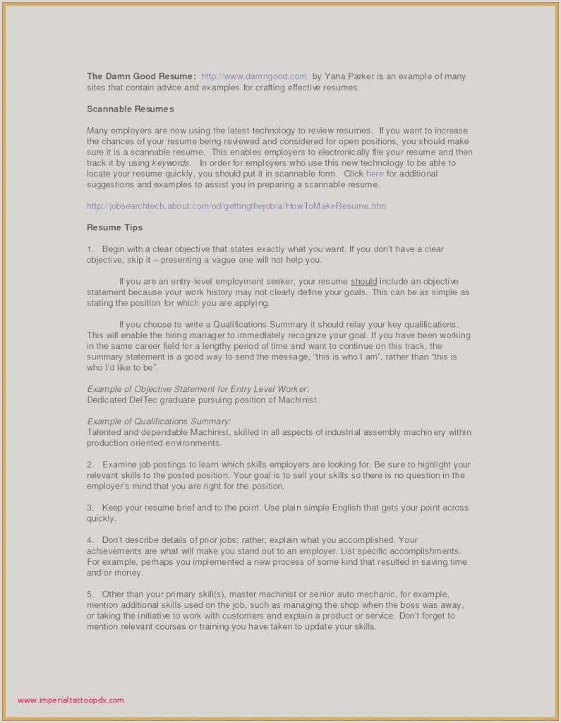 24 Employment Resume Examples