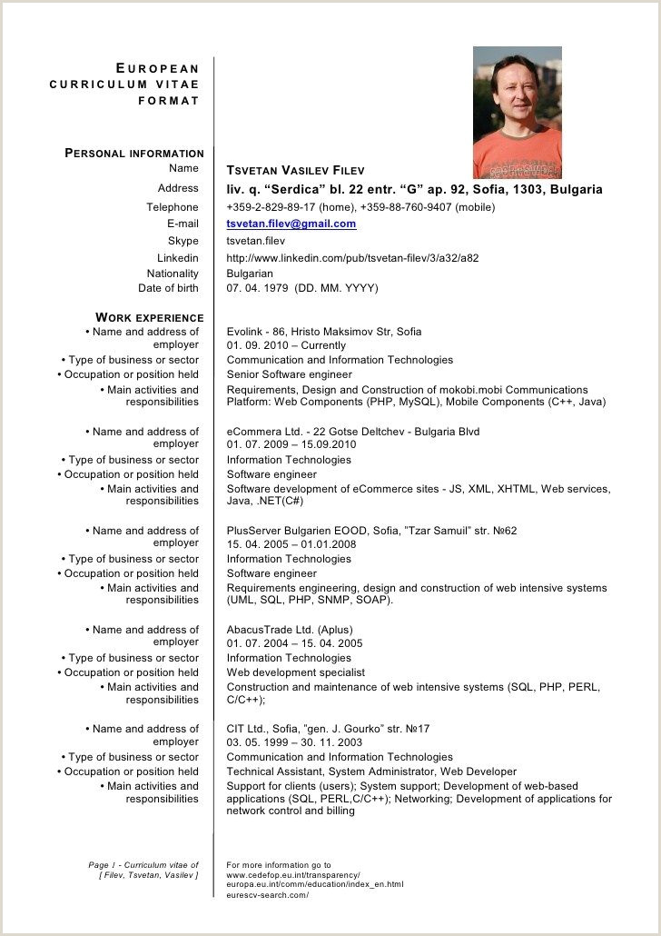 european cv template doc Segmenmouldingsco