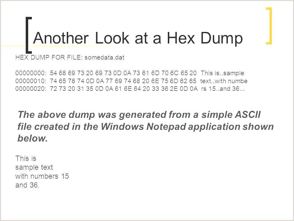 Application Cv Gratuit Exemple Download Template Cv Word