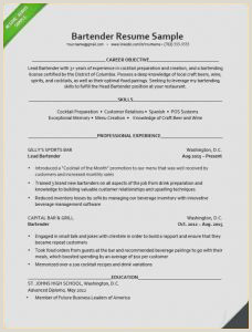 Cvs Resume Paper Bartender Resumes Samples New Bartender Cv Sample – Server