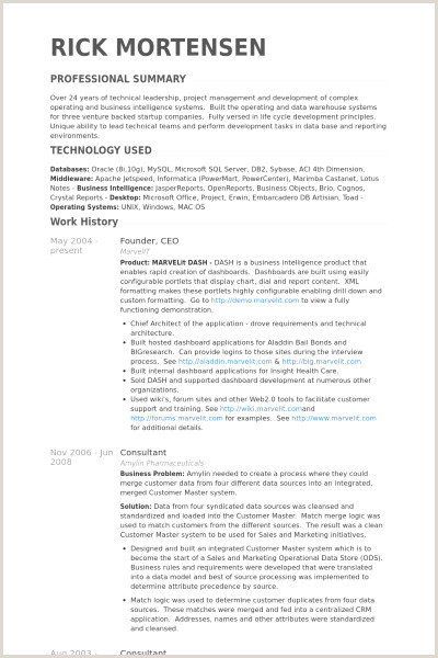 Data Warehouse Resume 49 Elegant S Crystal Reports Resume Sample