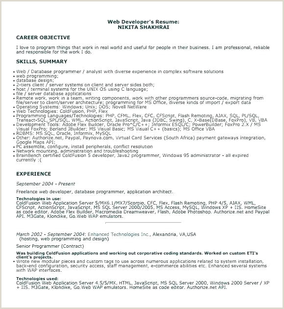 Developer Resume Template Templates Free Download Germany