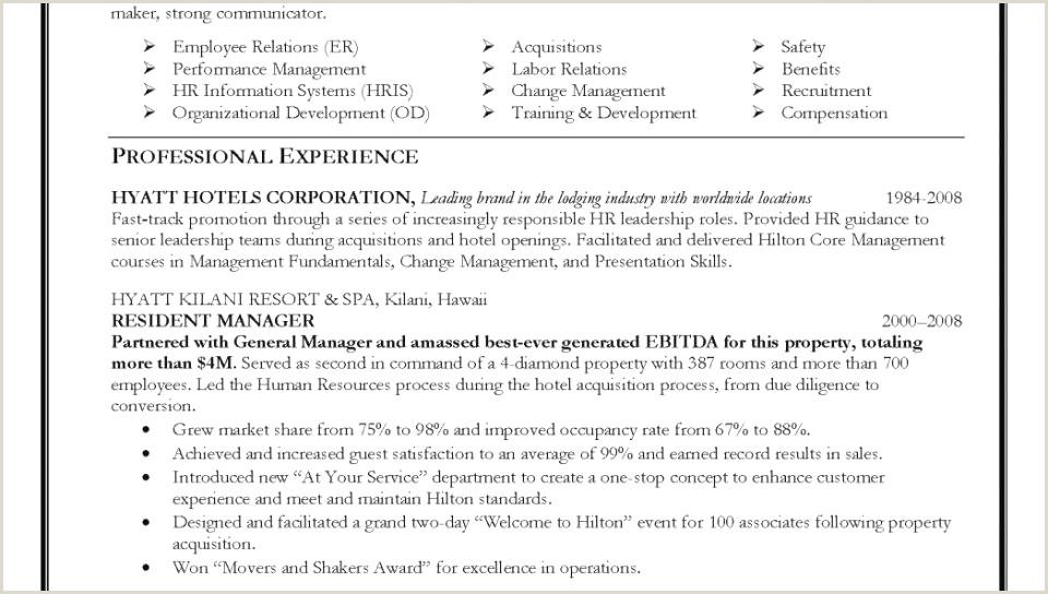 Professional Summary for Resume Example Inspirational Resume