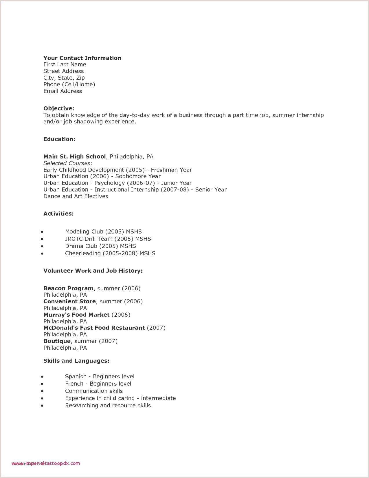 Child Care Director Resume Unique Child Resume Sample