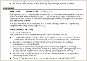 Daycare Resume Samples Daycare Director Resume Elegant Daycare Resume 0d Resume