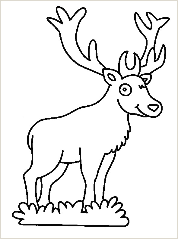 Deer Antlers Logo Coloriage Animaux Cerf
