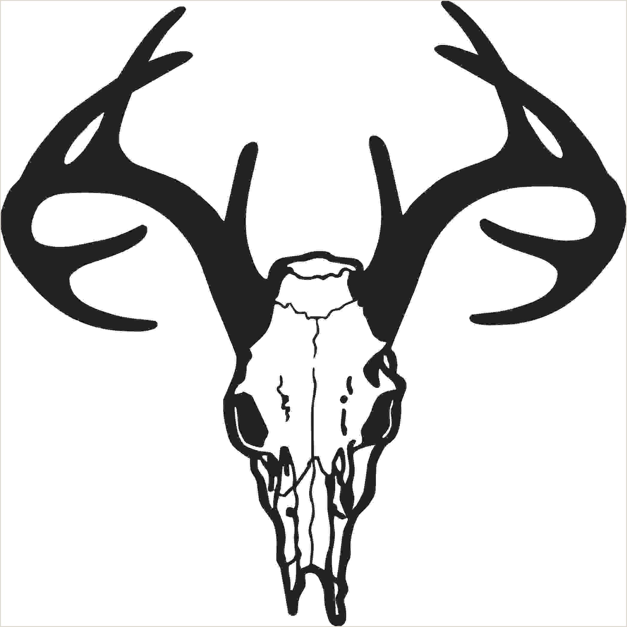 Deer Antlers Logo Whitetail Deer Clip Art Deer Pics