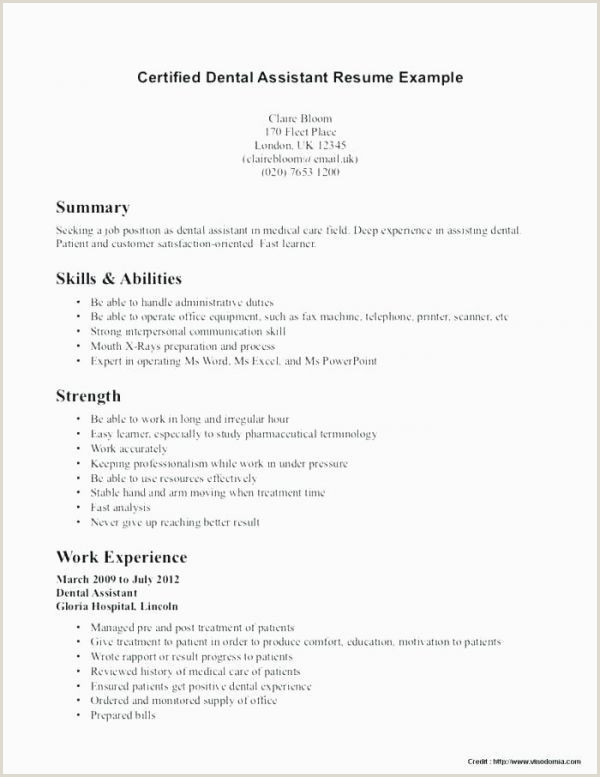 Resume Examples for Students Luxury Bination Resume Builder