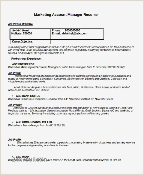 Department Manager Resume Examples Director Resume Examples