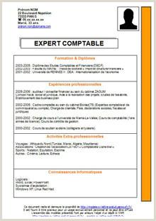 Des Exemples De Cv Pdf Cv De Travail Maroc