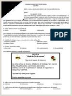 Descargar Curriculum Vitae Gratis En Español Para Rellenar Libro Espa±ol 3 Nivel Secundaria Editorial Conecta