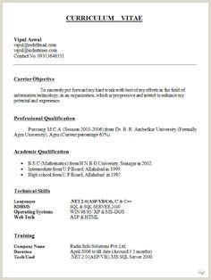 Descargar Curriculum Vitae Para Rellenar Con Foto Curriculum Vitae Word Para Pletar Gratis Singolo Best