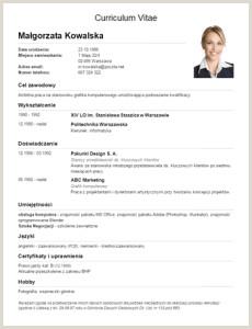 Descargar formato Hoja De Vida En Blanco 11 Modelos De Curriculums Vitae 10 Ejemplos 21 Herramientas
